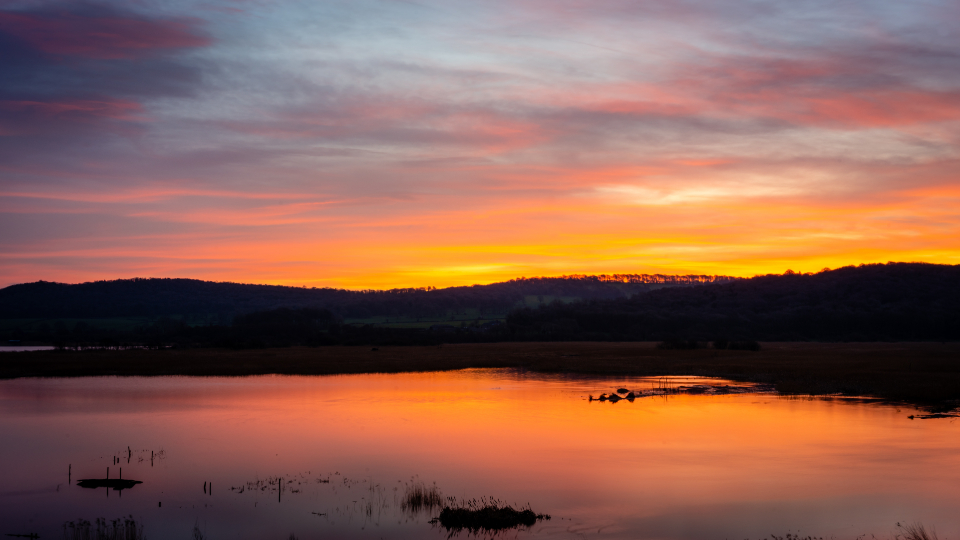 Evening scene on lake